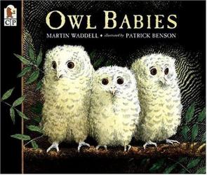 Martin Waddell: Owl Babies