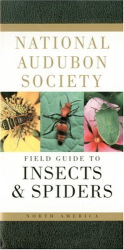 NATIONAL AUDUBON SOCIETY: National Audubon Society Field Guide to North American Insects and Spiders