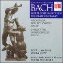 Bach JS - Cantates Profanes, BWV 204 & 208: Peter Schreier - Lucia Popp - Kammerorchester Berlin