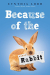 Cynthia Lord: Because of the Rabbit