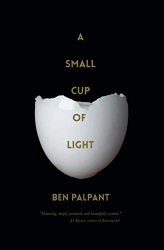 Palpant, Ben T.: A Small Cup of Light: a drink in the desert