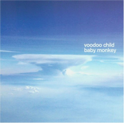 Voodoo Child - Baby Monkey