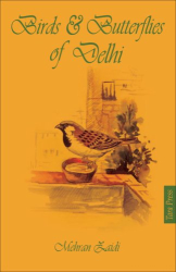 Mehran Zaidi: Birds & Butterflies of Delhi