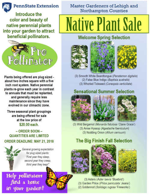 Plant kit sale 1 copy