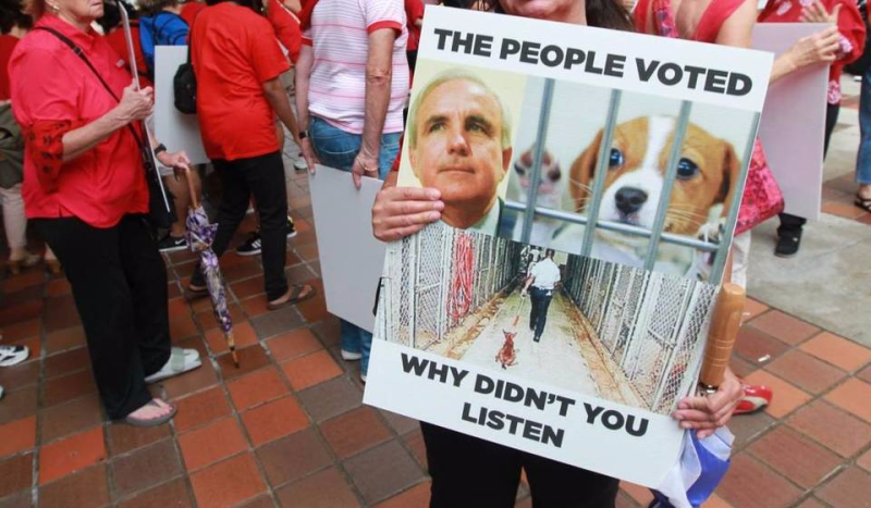 Petprotest