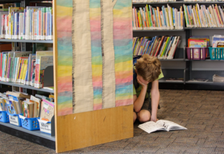 Boy Reading at the Library