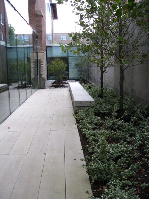Bloor Gladstone Branch Library reading garden reason # 70 courtyard