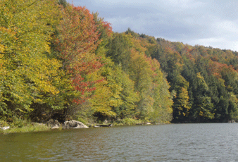 Fall foliage boat charter