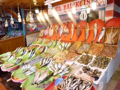 Market-Fish 2