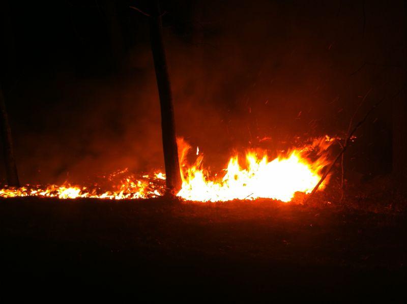 Blue_Hills Fire