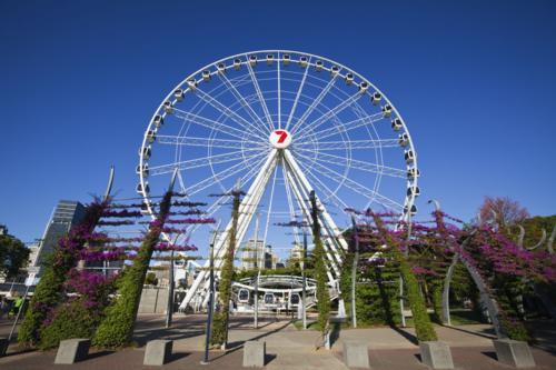 Wheel of Brisbane, una noria de 60 metros de altura en el Southbank  de Brisbane (Australia). / Andrew Watson