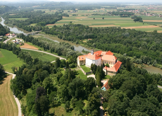 Aerial view of Castle Borl