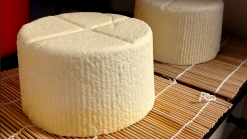Cheese Making 101 Course