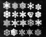 Flocons_neige