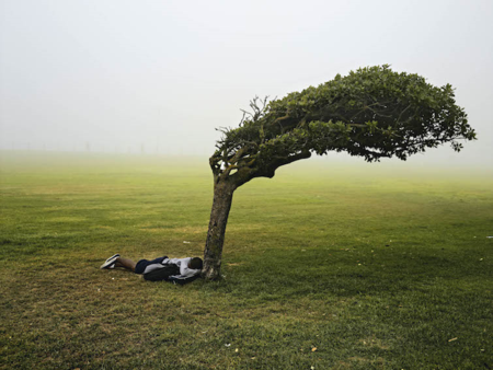 Green Point Common, Cape Town, 2013 © Pieter Hugo Copia cromogénica, 105 x 135 cm © Pieter Hugo, courtesy Stevenson Gallery, Cape Town/Johannesburg and Yossi Milo, New York