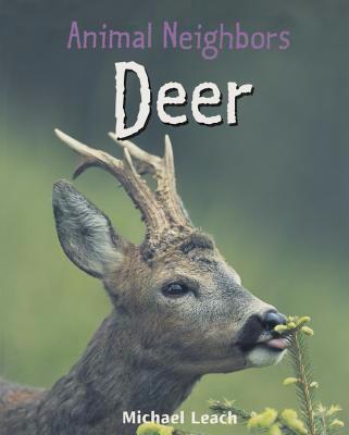 Animal Neighbors Deer